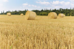 Straw bale and blue sky in Ukraine Stock Images