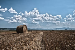 Straw bale. Captured on a hot summer day Royalty Free Stock Photos