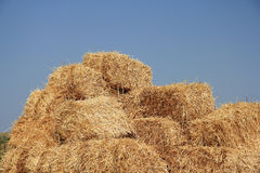 Straw bale Royalty Free Stock Photo