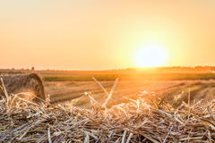 Straw bale close-up in light of the low evening sun backlight on horizon. Dry hay background on the sunset Royalty Free Stock Photos