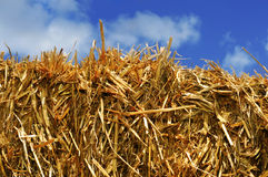 Straw bale. Closeup of a square straw bale over the sky Royalty Free Stock Image