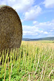 Straw bale Stock Images