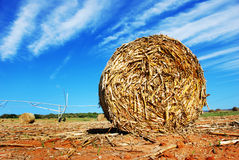 Straw bale on a farm. Photo of a straw bale on a farm Royalty Free Stock Image