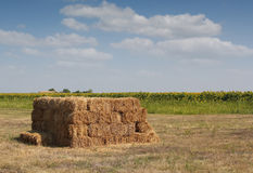 Straw bale on field Stock Photography
