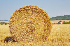 Straw bale. On the field after harvest Royalty Free Stock Photos