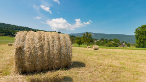Straw bale in the field, the mountain in the background Royalty Free Stock Images