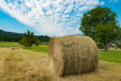 Straw bale in the field, the mountain in the background Stock Photos