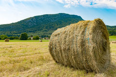 Straw bale in the field, the mountain in the background Royalty Free Stock Photo