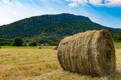 Straw bale in the field, the mountain in the background Royalty Free Stock Photography
