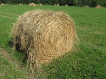 Straw bale on field Royalty Free Stock Images