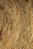 STRAW BALE IN THE FIELD, TEXTURE. STRAW BALE IN THE FIELD royalty free stock photo
