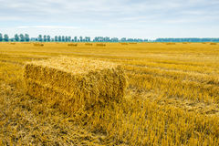 Straw bale in front of a large stubble field. In a cloudy day in the summer season Stock Photos