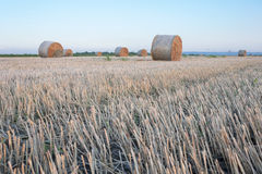 Straw bale / hay stack on golden sunny day with clear sky Stock Photo