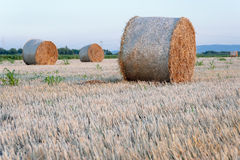Straw bale / hey stack on golden sunny day with clear sky Royalty Free Stock Images