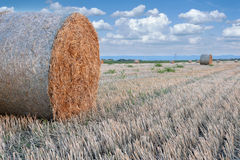 Straw bale hay stack on golden sunny day. With white clouds in the background Royalty Free Stock Images