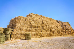 Straw bale high stack farm animal food Stock Photos