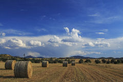 Straw Bale Landscape Royalty Free Stock Images