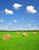 Straw bale. In a lush green field and blue sky Stock Image