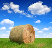 Straw bale. In a lush green field and blue sky Royalty Free Stock Photos