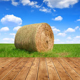 Straw bale in a lush green field Royalty Free Stock Image