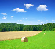 Straw bale. In a lush green field and blue sky Royalty Free Stock Images