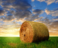 Straw bale. In a lush green field in the sunset Royalty Free Stock Image