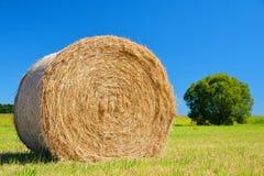 Straw bale on meadow stock photo