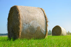 Straw bale on meadow Royalty Free Stock Images