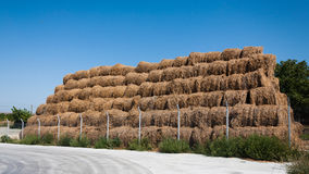 Straw bale stack Stock Photography