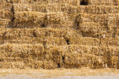 Straw bale stack detail Royalty Free Stock Images