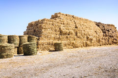 Straw bale stack farm pile Stock Image