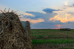 Straw bale at summertime Stock Image