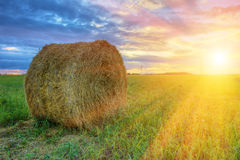 Straw bale in the sunset. Landscape with straw bale in the sunset Royalty Free Stock Image