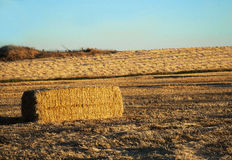 Straw bale at sunset Stock Photo