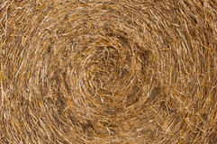 Straw bale texture Royalty Free Stock Image