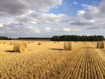 Straw Bales Stock Foto's