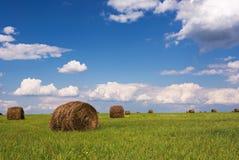 Straw bales. On field under blue sky Stock Photos