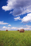 Straw bales. On field under blue sky Royalty Free Stock Photo