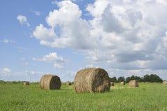 Straw Bales stockfotografie