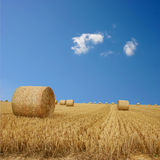 Straw Bales Stock Photo