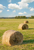 Straw bales Royalty Free Stock Image