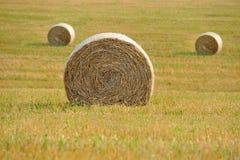 Straw Bales Imagem de Stock