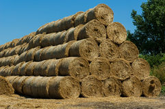 Straw bales Royalty Free Stock Photo