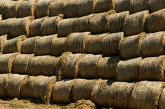 Straw bales Stock Photos
