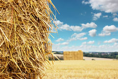 Straw Bales Royalty Free Stock Image