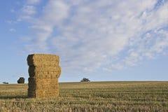 Straw Bales Foto de Stock Royalty Free