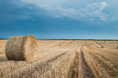 Straw Bales Photographie stock