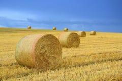 Straw Bales Immagine Stock