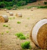 Straw Bales Imagem de Stock Royalty Free