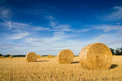 Free Straw Bales Royalty Free Stock Images - 4489199